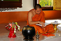 Buddhist monk wearing an orange robe and studying a religious book in Wat Phra Singh Buddhist temple in Chiang Mai city, Thailand, Southeast Asia. Construction on Wat Phra Singh began in 1345 when King Phayu, the fifth king of the Mangrai dynasty, had a chedi built to house the ashes of his father King Kham Fu.