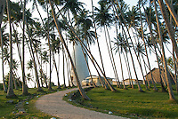 Palm trees cool the path to Barberyn (Beruwala) lighthouse Island -near Bentota, Sri Lanka