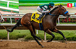 DEL MAR, CA  AUGUST 20:  #4 Edgeway, ridden by Joe Bravo, cruises to victory in the Rancho Bernardo Handicap (Grade lll) on August 20, 2021 at Del Mar Thoroughbred Club in Del Mar, CA.  (Photo by Casey Phillips/Eclipse Sportswire/CSM)