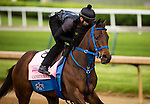 LOUISVILLE, KY - MAY 04: Cathryn Sophia gallops in preparation for the Kentucky Oaks at Churchill Downs on May 04, 2016 in Louisville, Kentucky.(Photo by Alex Evers/Eclipse Sportswire/Getty Images)