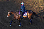 November 3, 2020: Sistercharlie, trained by trainer Chad C. Brown, exercises in preparation for the Breeders' Cup Filly & Mare Turf at Keeneland Racetrack in Lexington, Kentucky on November 3, 2020. John Voorhees/Eclipse Sportswire/Breeders Cup/CSM