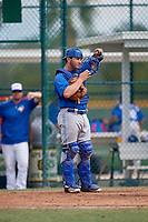 Toronto Blue Jays catcher Ryan Gold (83) during an Instructional League game against the Pittsburgh Pirates on October 13, 2017 at Pirate City in Bradenton, Florida.  (Mike Janes/Four Seam Images)