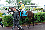Dixie Twist(9) with Jockey Gary Boulanger aboard at  the Natalma Stakes at Woodbine Race Course in Toronto, Canada on September 13, 2014 with Jockey Patrick Husbands aboard.