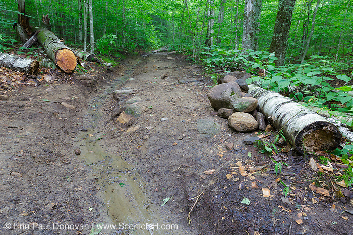 Newly built water drainage ditch along the Mt Kinsman Trail in the White Mountains, New Hampshire. Much of the trail work done along the White Mountain trail system is done by volunteers.