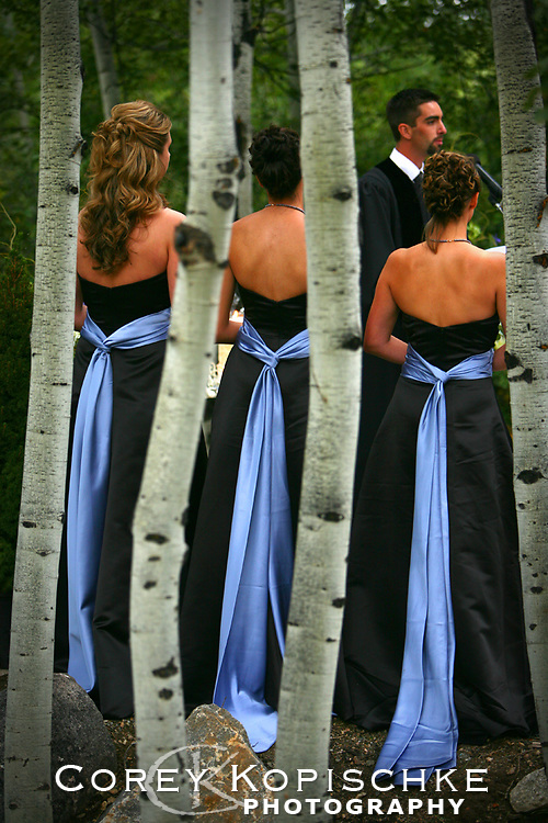 Bridesmaids in the aspen trees waiting for the bride to enter.
