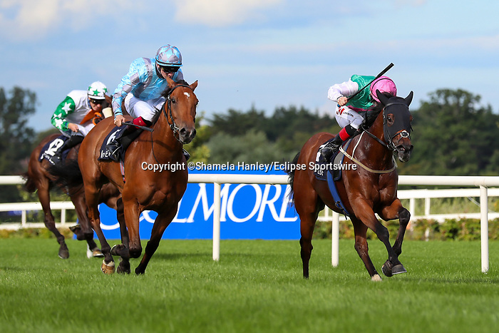 September 11, 2021: Masen (GB) #4, ridden by jockey Colin Keane holds on to win the Sovereign Path Handicap on the turf on Irish Champions Weekend at Leopardstown Racecourse in Dublin, Ireland on September 11th, 2021. Shamela Hanley/Eclipse Sportswire/CSM