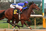 HOT SPRINGS, AR - JANUARY 18:  Discreetness #6, ridden by Jon Court, crossing the finish line while holding off Gordy Florida #5 and winning the Smarty Jones Stakes at Oaklawn Park on January 18, 2016 in Hot Springs, Arkansas. (Photo by Justin Manning)