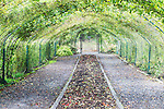 Arbor over fall garden beds.   Point Defiance Park, Tacoma, WA boasts wonderful gardens including rose gardens, dahlia garden, native plant, rhododendron and acres of old growth forest.  Hike, bike, photograph, fish, picnic, kayak
