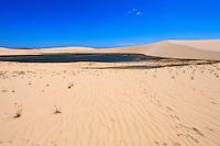 beside the seashore the tide creates salt pool in Nordeste Brazil
