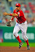 6 June 2009: Washington Nationals' first baseman Nick Johnson in action against the New York Mets at Nationals Park in Washington, DC. The Nationals defeated the Mets 7-1, with Nats' starting pitcher John Lannan going the distance for his first career complete-game win. Mandatory Credit: Ed Wolfstein Photo