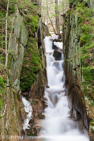 Small gorge on Cascade Brook in the Flume Gorge area of Franconia Notch State Park in Lincoln, New Hampshire during the spring months.