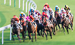 Horses compete during the race 8 of HKJC Horse Racing 2017-18 at the Sha Tin Racecourse on 16 September 2017 in Hong Kong, China. Photo by Victor Fraile / Power Sport Images