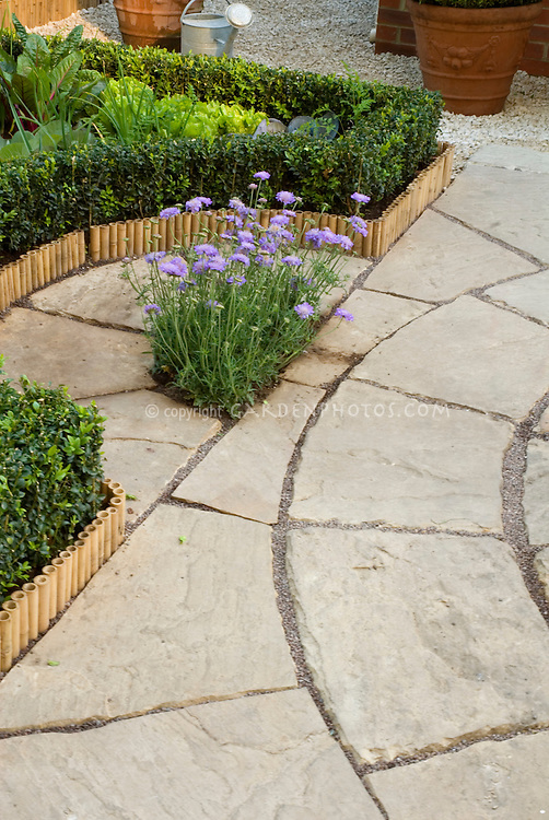 Patio pavers in stone, with vegetable garden, watering can, pots, inset flowering perennial 37709