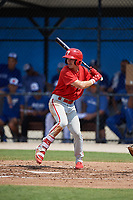 Philadelphia Phillies Tucker Maxwell (29) at bat during an Instructional League game against the Toronto Blue Jays on September 27, 2019 at Englebert Complex in Dunedin, Florida.  (Mike Janes/Four Seam Images)