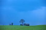 Europa, DEU, Deutschland, Nordrhein Westfalen, NRW, Eife, Nordeifel, Nuetheim, Typische Landschaft, Regenwolken, Baeueme, Kategorien und Themen, Natur, Umwelt, Landschaft, Landschaftsfotos, Landschaftsfotografie, Landschaftsfoto, Wetter, Himmel, Wolken, Wolkenkunde, Wetterbeobachtung, Wetterelemente, Wetterlage, Wetterkunde, Witterung, Witterungsbedingungen, Wettererscheinungen, Meteorologie, Bauernregeln, Wettervorhersage, Wolkenfotografie, Wetterphaenomene, Wolkenklassifikation, Wolkenbilder, Wolkenfoto....[Fuer die Nutzung gelten die jeweils gueltigen Allgemeinen Liefer-und Geschaeftsbedingungen. Nutzung nur gegen Verwendungsmeldung und Nachweis. Download der AGB unter http://www.image-box.com oder werden auf Anfrage zugesendet. Freigabe ist vorher erforderlich. Jede Nutzung des Fotos ist honorarpflichtig gemaess derzeit gueltiger MFM Liste - Kontakt, Uwe Schmid-Fotografie, Duisburg, Tel. (+49).2065.677997, archiv@image-box.com, www.image-box.com]
