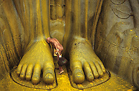 INDIA , Karnataka , Shravana Belagola , Jainism, naked jain monk at feet of statue Lord Bahubali during festival Mahamastakabisheka , which takes place every 12 years only, the statue is poured with spicy and colour liquids, milk and flowers