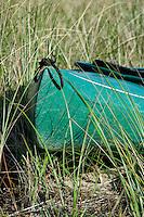 Kayak in dune grass.