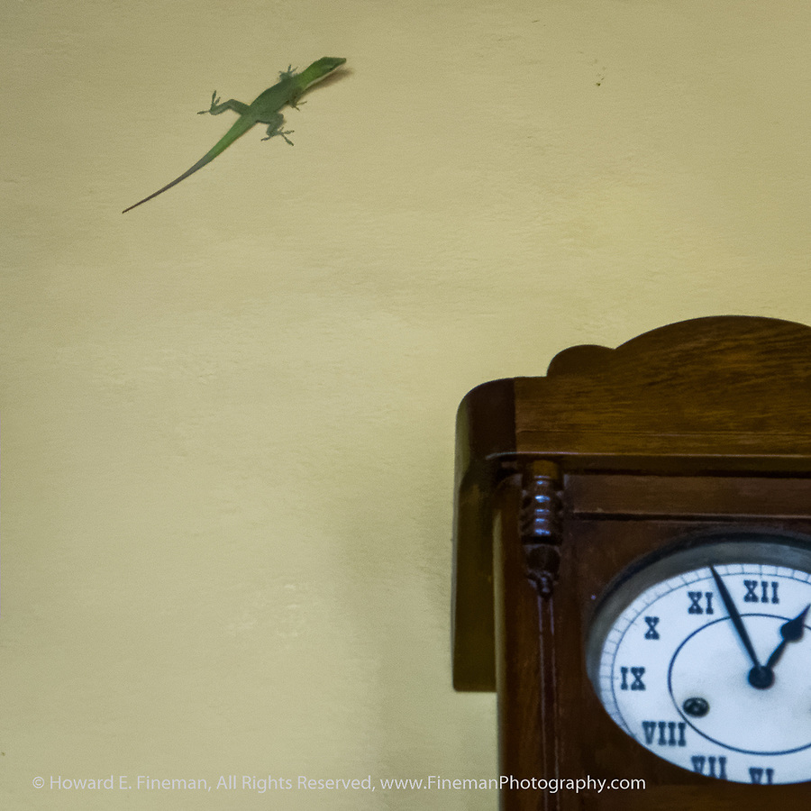Visitor checking the time
