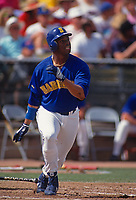 TEMPE, AZ - Ken Griffey Jr. of the Seattle Mariners bats during a spring training game at Tempe Diablo Stadium in Tempe, Arizona in 1991. (Photo by Brad Mangin)