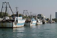 - fishing boats in port....- pescherecci in porto..