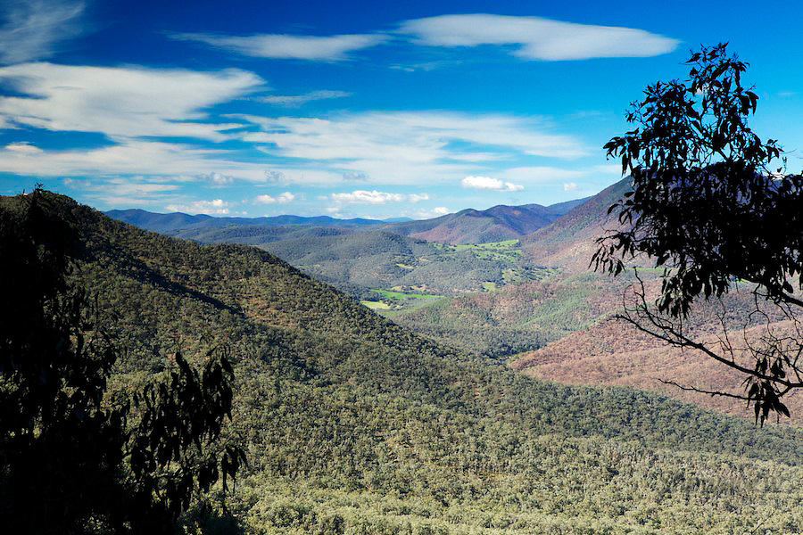 Image Ref: HC106<br /> Location: Snowy River NP, Victoria<br /> Date: 21st May 2014