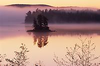 Island at dawn<br /> Somes  Harbor<br /> Mount Desert Island<br /> Maine