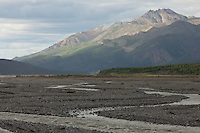 One of the many braided rivers in Denali National Park.