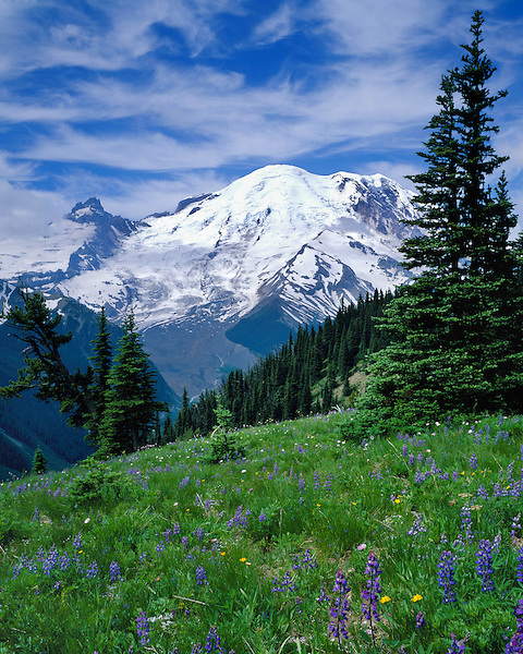 White River Valley Overlook and Mount Rainier (14411 feet), Seattle, Washington, USA. .  John offers private photo tours throughout the western USA, especially Colorado. Year-round.