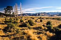 Farmland in Lees Valley near Oxford - Canterbury, New Zealand