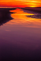 Red and Purple Puddles