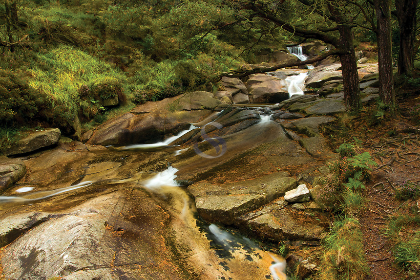 Glen River, Donard Forest Park, Newcastle, County Down