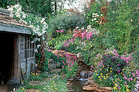 Rustic shed, Butterfly Garden, streamside plantings. Lush primula, irises, roses Rosa climbing vine on shed roof, running water stream waterfall garden, gorgeous flowers, naturalistic, garden tools, attract wildlife to the garden with great charm in spring