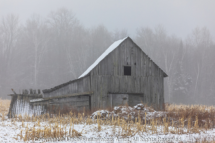 A weathered barn on a foggy morning in northern Wisconsin.