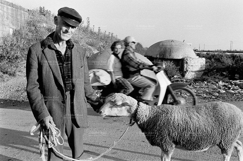Albania. Province of Lushnje. Lushnje. An old farmer and his sheep. A couple rides his motorbike on the road and passes near an old bunker. Enver Hoxha (1908-1985) was for 40 years a dictator and a communist leader. He decided after the historic break with Russia in 1961 to protect his country from any invaders by investing in a massive fortification (more than a million bunkers were built over the years till 1985). © 2003 Didier Ruef