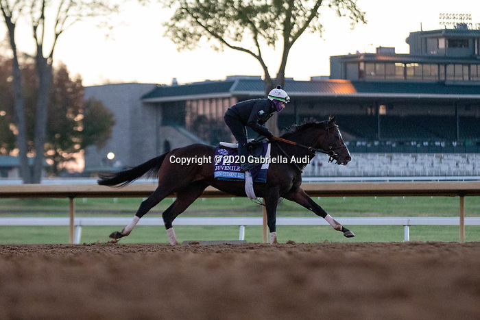 November 4, 2020: Reinvestment Risk, trained by trainer Chad C. Brown, exercises in preparation for the Breeders' Cup Juvenile at Keeneland Racetrack in Lexington, Kentucky on November 4, 2020. Gabriella Audi/Eclipse Sportswire/Breeder's Cup/CSM