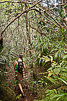 Hiking the Hanakapiai Falls Trail, Napali Coast, Kauai, Hawaii
