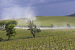 The peloton kicks up dust from the Strade Bianca during Stage 11 of the 2021 Giro d'Italia, running 162km from Perugia to Montalcino, (Brunello di Montalcino Wine Stage), Italy. 19th May 2021.  <br /> Picture: LaPresse/Fabio Ferrari | Cyclefile<br /> <br /> All photos usage must carry mandatory copyright credit (© Cyclefile | LaPresse/Fabio Ferrari)