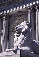 Lion statue in front of New York Public Library<br />
