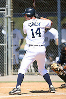 March 21st 2008:  Ryan Strieby of the Detroit Tigers minor league system during Spring Training at Tiger Town in Lakeland, FL.  Photo by:  Mike Janes/Four Seam Images