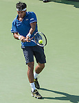 Somdev Devvarman (IND), defeats Alexandr Dolgopolov (UKR) 6-3, 7-6(4) at the CitiOpen 2013 in Washington, D.C., Washington, D.C.  District of Columbia on July 30, 2013.