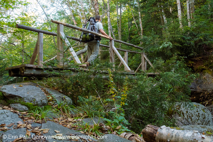 The Sanders Bridge along the Randolph Path in Low and Burbank's Grant, New Hampshire. Originally built in 1976, this footbridge crosses the Cold Brook; and it is a memorial to Miriam Sanders, who was the treasurer of the Randolph Mountain Club for many years.