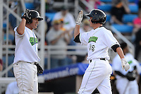 Jamestown Jammers designated hitter Danny Collins #36 is greeted catcher Jin-De Yhang #47 by after hitting a home run during a game against the Williamsport Crosscutters on June 20, 2013 at Russell Diethrick Park in Jamestown, New York.  Jamestown defeated Williamsport 12-6.  (Mike Janes/Four Seam Images)