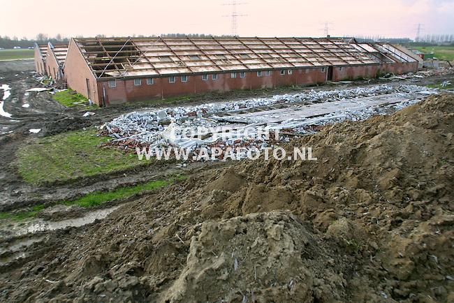 valburg 150202 ook het varkensbedrijf van nijhoff/dumeco aan de reethsestraat  in valburg moet, zij het als een van de laatsate bedrijven , wijken voor de aanl;eg van de betuweespoorlijn.<br />foto frans ypma APA-foto