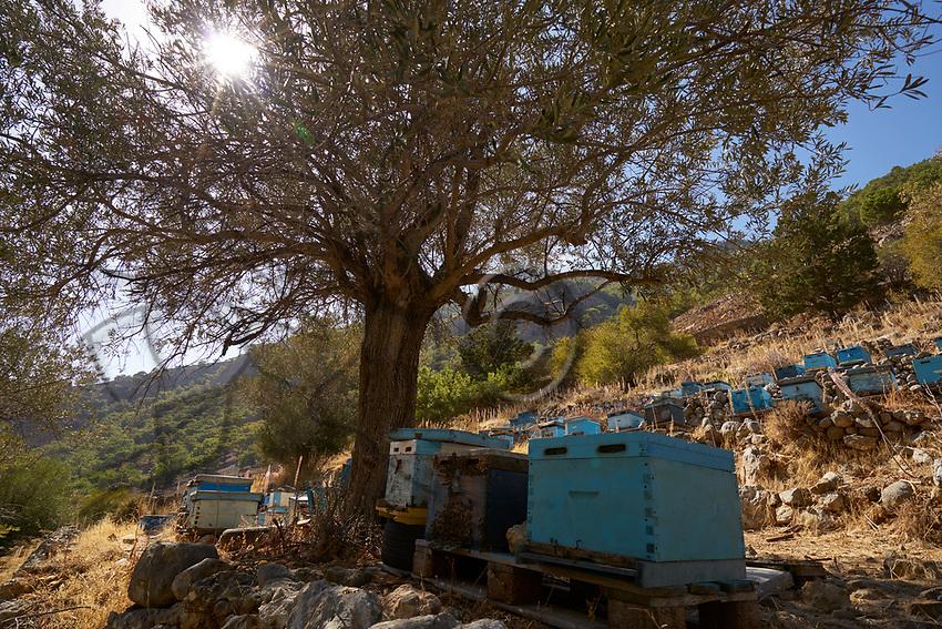A colorful apiary at the entrance to the gorges of Samaria in Crete. Crete has been known for its thyme honey since Antiquity.<br /> Un rucher coloré à la sortie des gorges de Samaria en Crête. La Crête est réputée pour son miel de thym depuis l'antiquité.