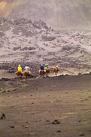 Horseback riders enjoy the unique scenery inside vast Haleakala crater at the Haleakala National Park on Maui.