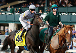 """October 09,, 2021: #4 Space Traveller (GB) and jockey Daniel Tudhope in the 36th running of the Keeneland Turf Mile Grade 1 $750,000 """"Win and You're In Breeders' Cup Mile Division""""  at Keeneland Racecourse in Lexington, KY on October 09, 2021.  Candice Chavez/ESW/CSM"""