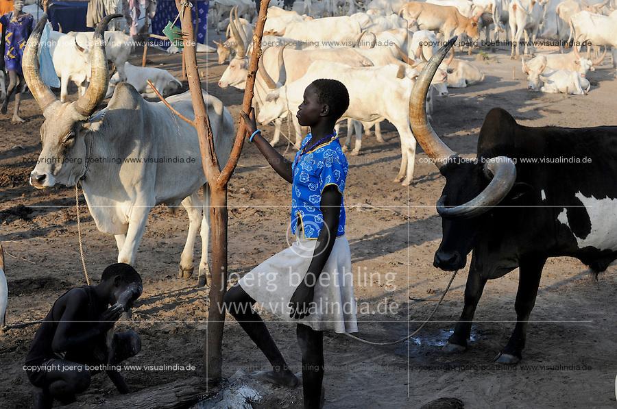 SOUTH SUDAN Bahr al Ghazal region , Lakes State, village Yeri cattle camp near Rumbek, Dinka children with Zebu cow / SUED-SUDAN  Bahr el Ghazal region , Lakes State, Dorf Yeri, Dinka Kinder mit Zebu Rindern im cattle camp bei Rumbek