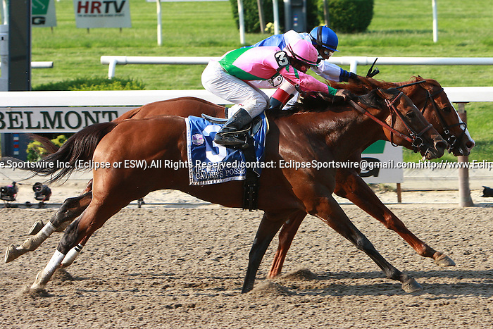 """Shackleford & John Velazquez holds off Caleb's Posse to win the Grade I """"Win & You're In"""" Metropolitan Mile Handicap for 3 year olds & up, going 1 mile at Belmont Park.  Trainer Dale Romans.  Owners Michael Lauffer & Wd Cubbedge"""