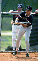 Boston Red Sox Rick Lancellotti during spring training circa 1991 at Chain of Lakes Park in Winter Haven, Florida.  (MJA/Four Seam Images)