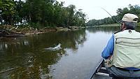 An Elk River smallmouth puts up a fight.<br />(NWA Democrat-Gazette/Flip Putthoff)